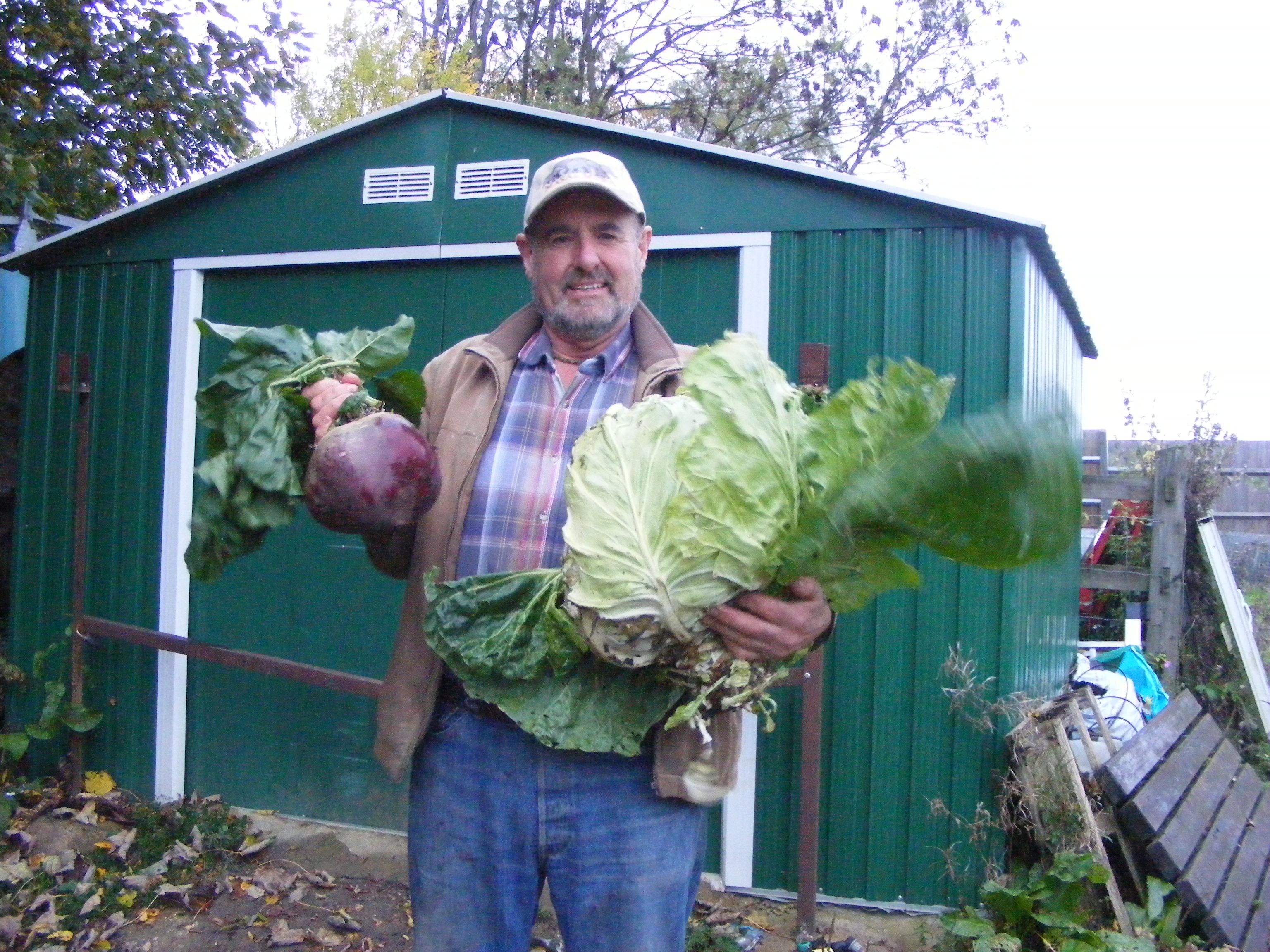 3.2 Kg cabbage 7.5 Lb beetroot